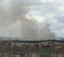 Denuncian quema de soca agrícola