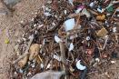 Retiran 150 kilos de basura de la playa, en Olas Altas